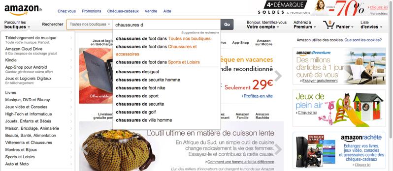Amazon, modèle