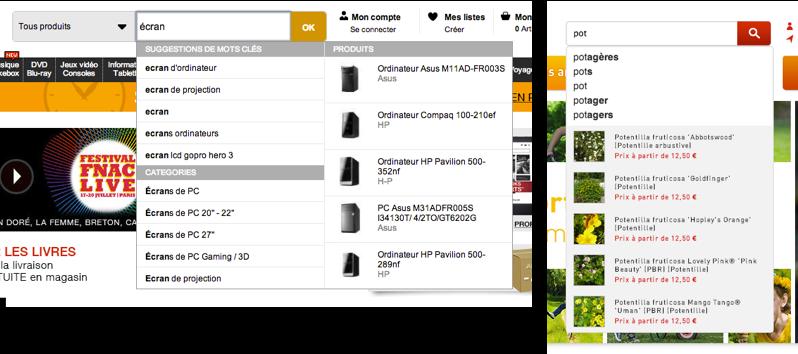 Comme la plupart des sites, La Fnac, à gauche met en gras ce qui a été saisi par l'utilisateur. À droite, Jardiland met en avant ce qui est suggéré à l'utilisateur, ce qui permet à ce dernier de se concentrer sur les différences entre chaque proposition.